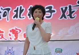 梨园春剧社河北梆子演唱会